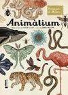 ANIMÀLIUM CAT